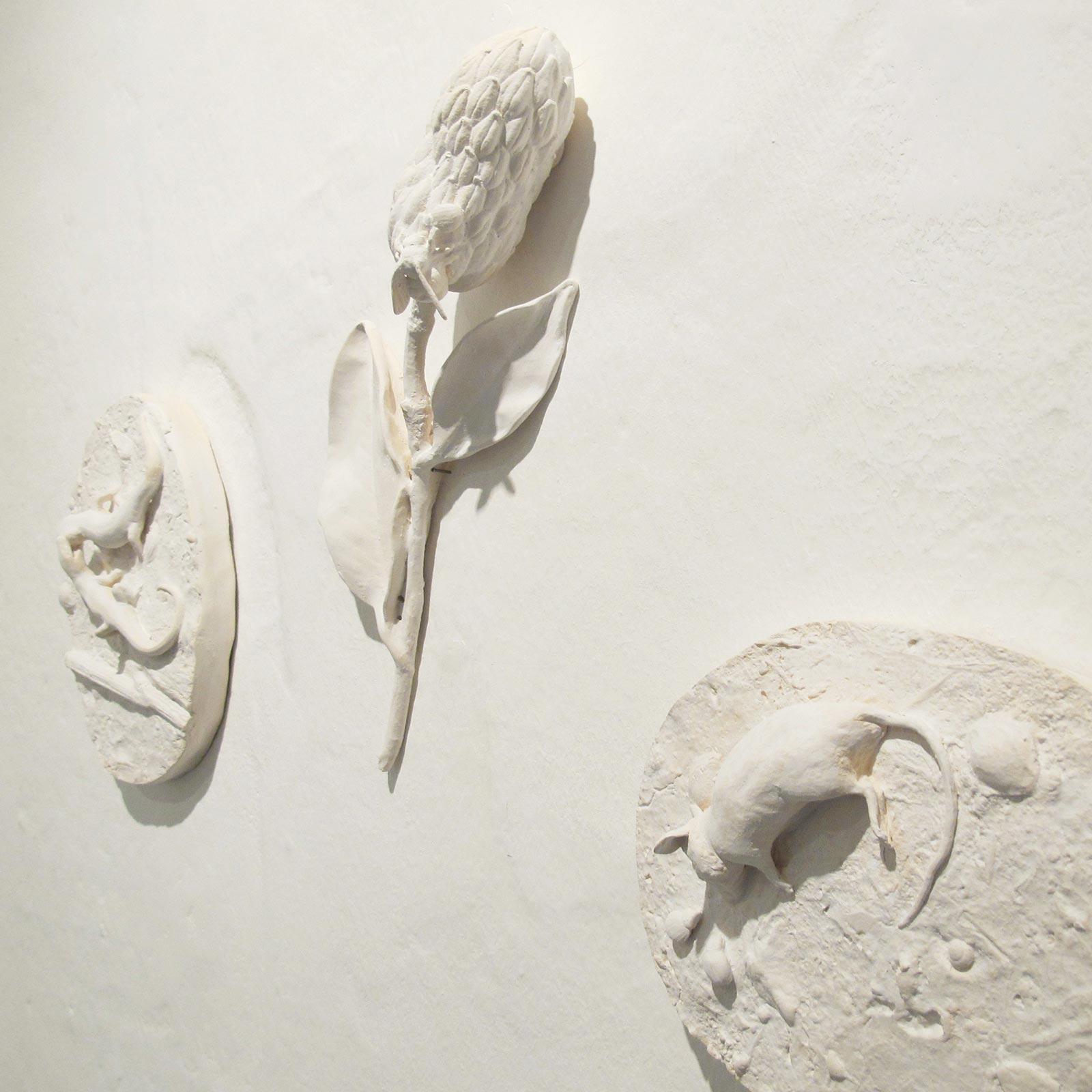 1-Caterina-sbrana,–Zoomachia,-argilla-bianca-cotta,2014