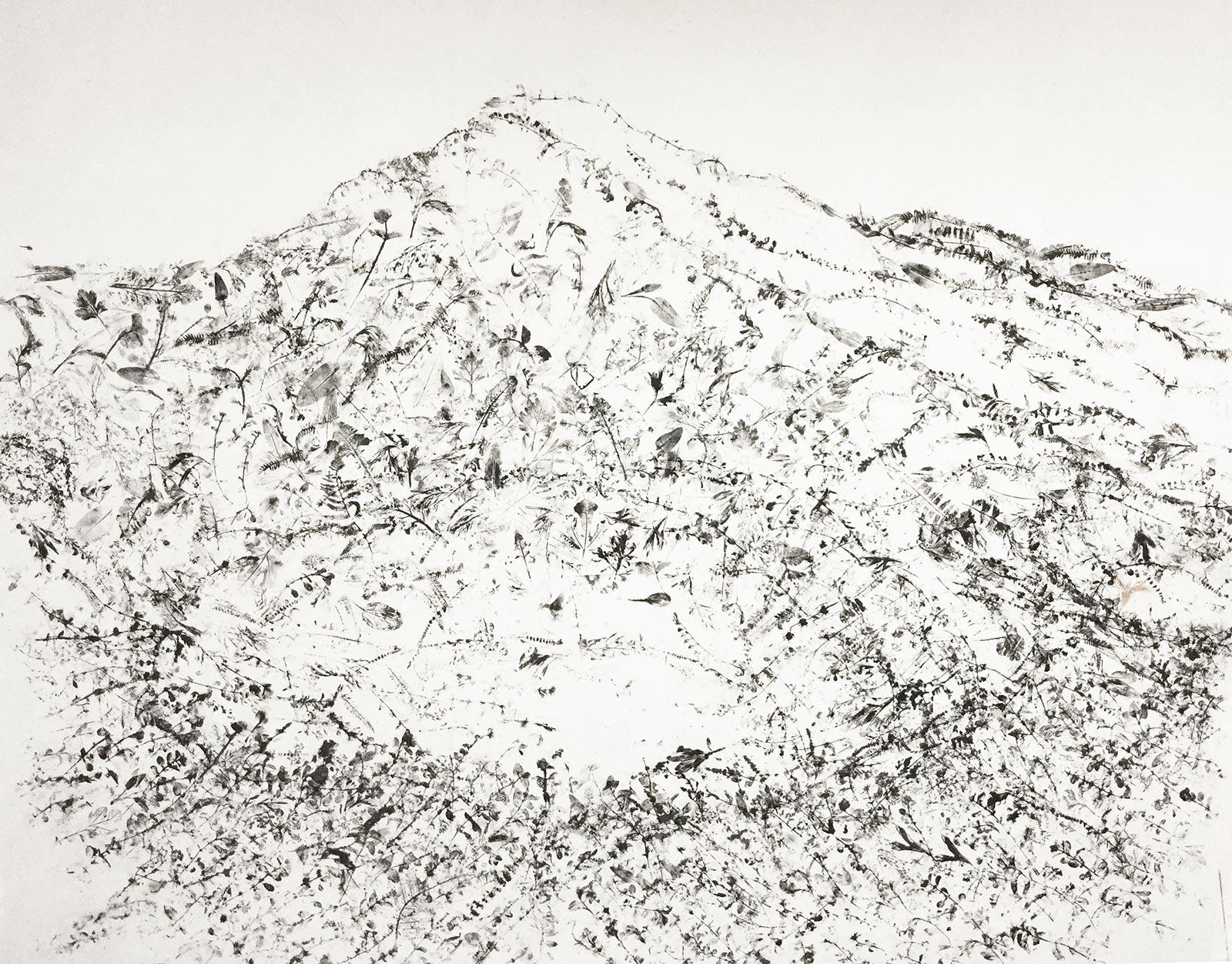 Caterina Sbrana, Erbario Paesaggio-Apuane, 2015, erbario a impressione inchiostro su carta intelata, inchiostro fatto a mano, cm 170x170, collezione privata